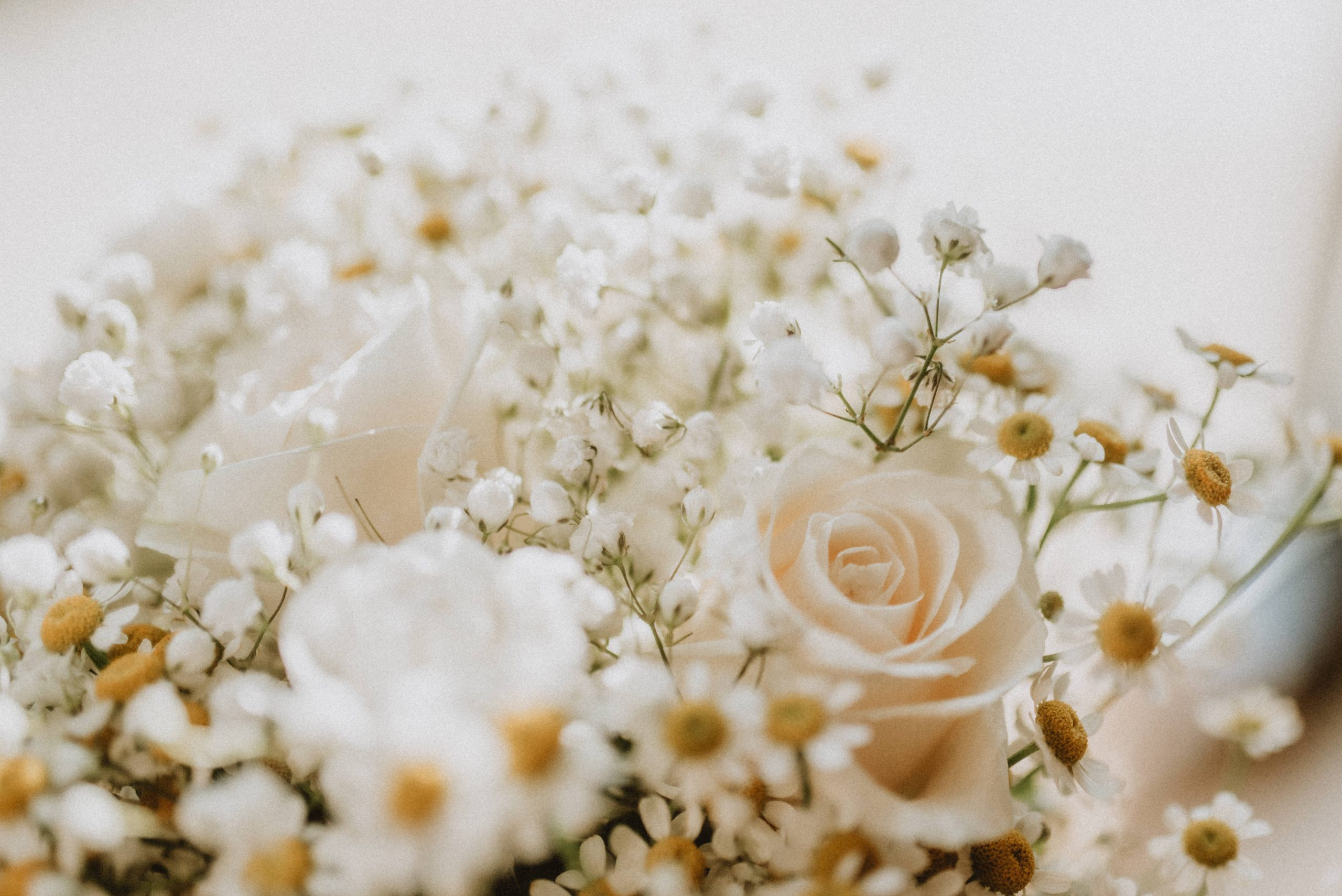 light colored bouquet of tiny daisies and roses